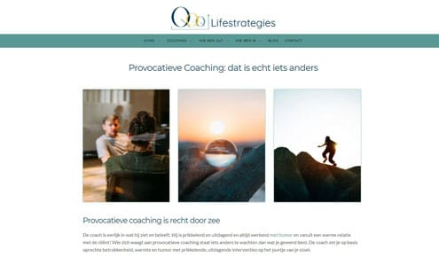 Lifestrategies Provocatieve Coaching
